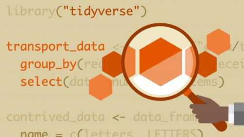 Lynda - Learning the R Tidyverse-yangyanghub
